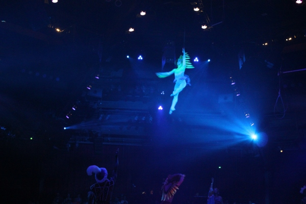 the festival of the lion king, arial performance
